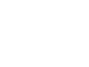 wikipedia_white.png