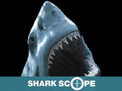 shark scope