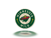 Minnesota Wild copy.png