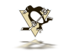 Pittsburgh Penguins 2 copy.png