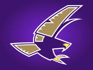 timber_creek_falcons.png