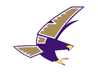 timber_creek_falcons_transp.png