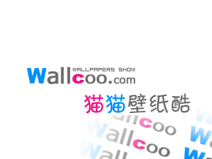 wallcoo-white.png
